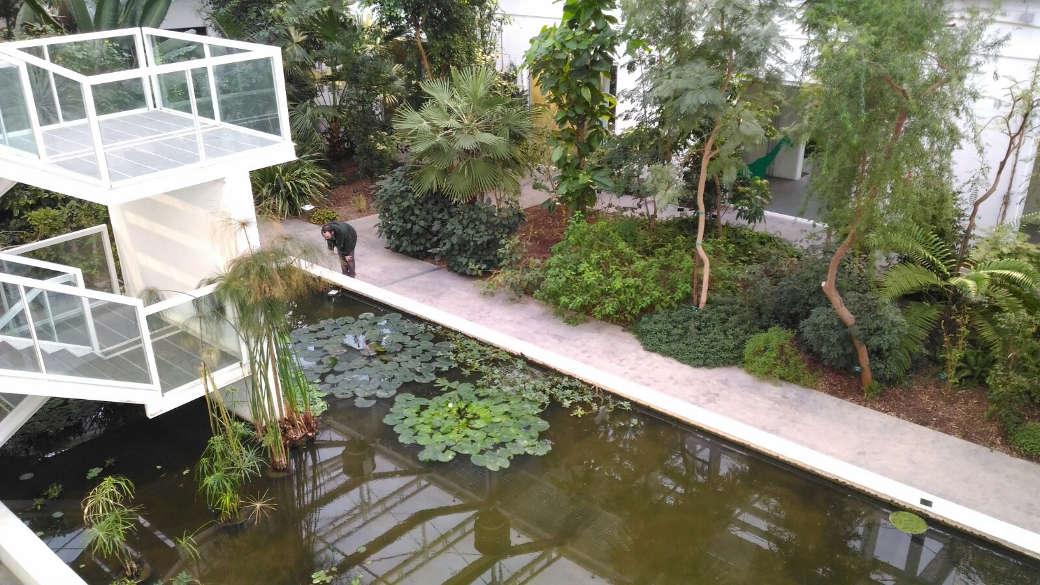 Tra città e natura visitare l orto botanico di padova emotion