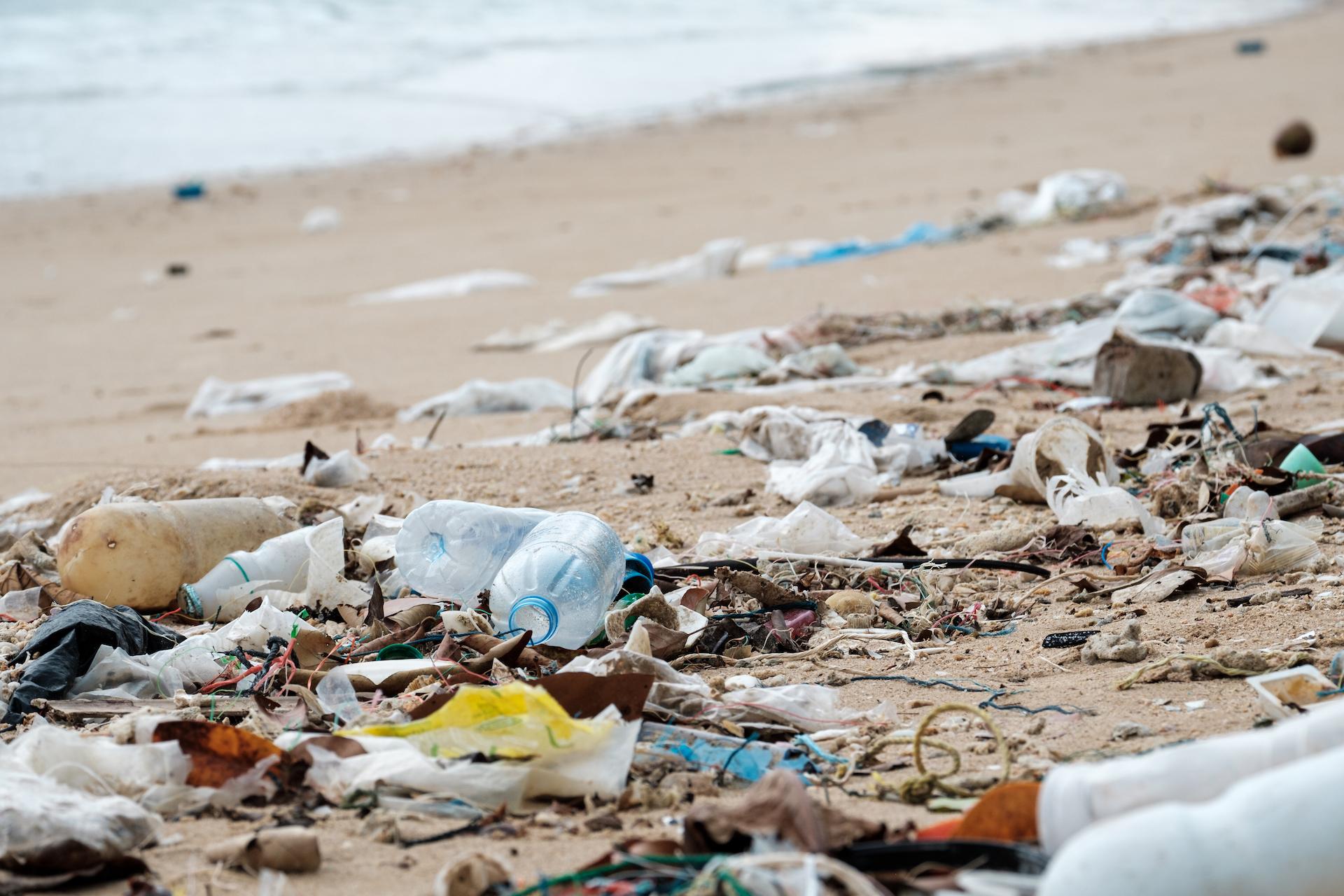 La campagna Worldrise per proteggere il mare dalle microplastiche.