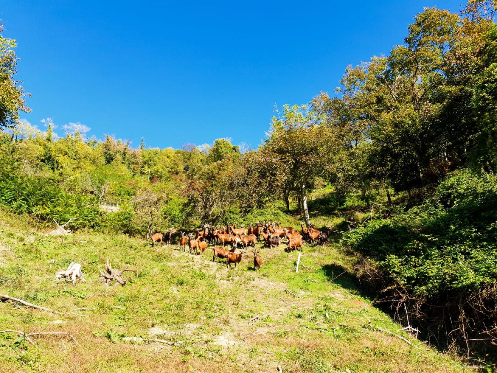 Territorio Cascina Badin