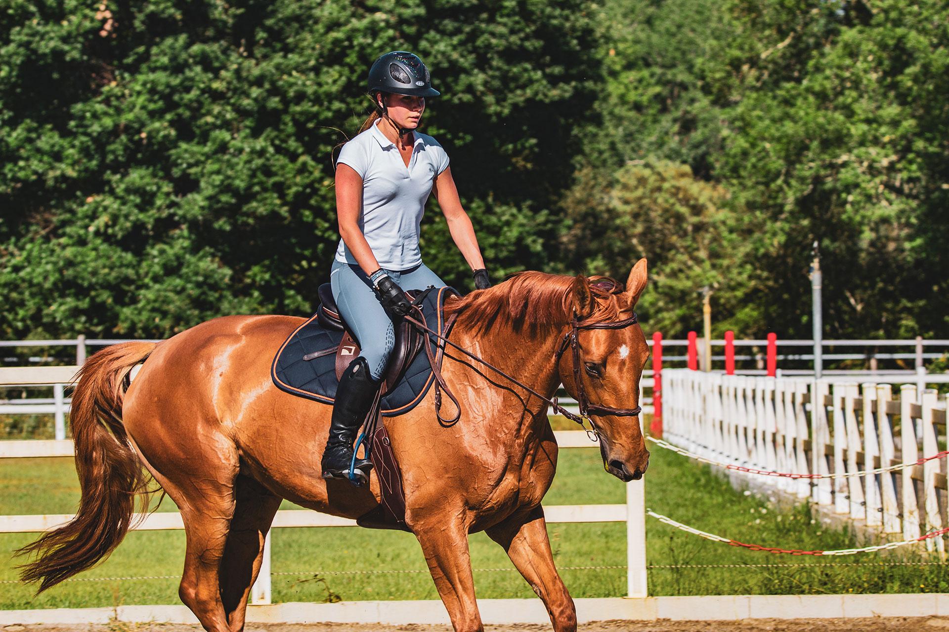 cavallo atleta