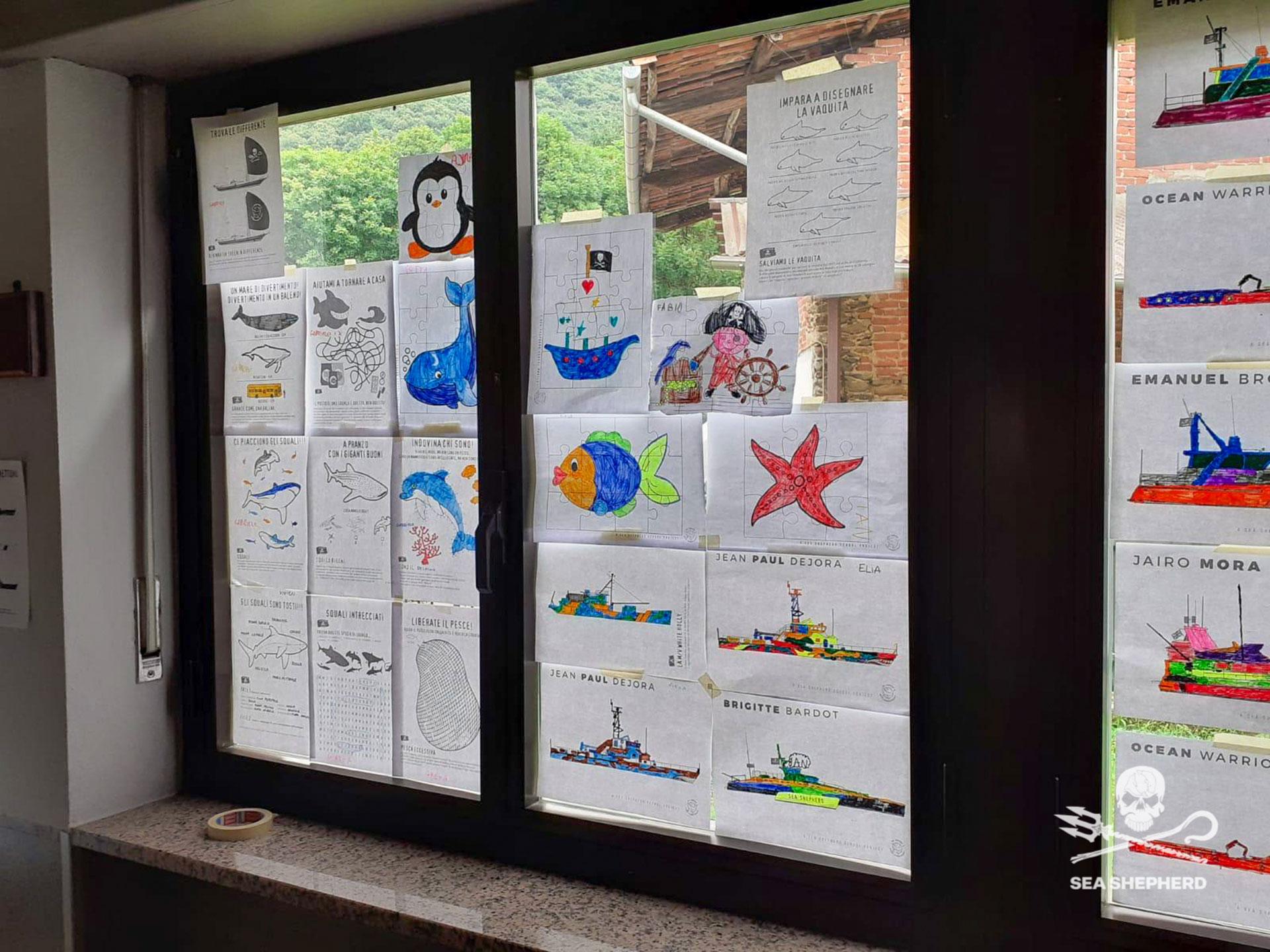 Sea Shepherd nelle scuole