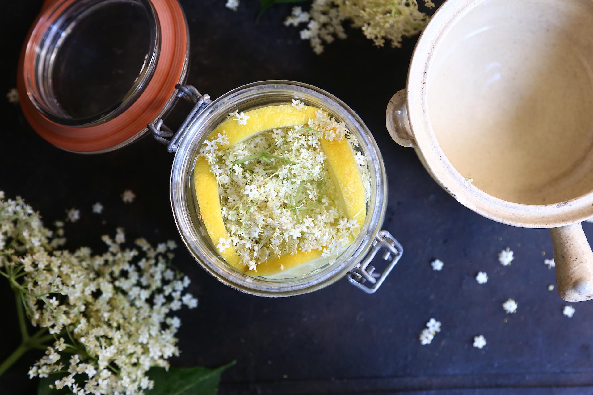 Acqua per infusione fiori sambuco e limone © Beatrice Spagoni copia