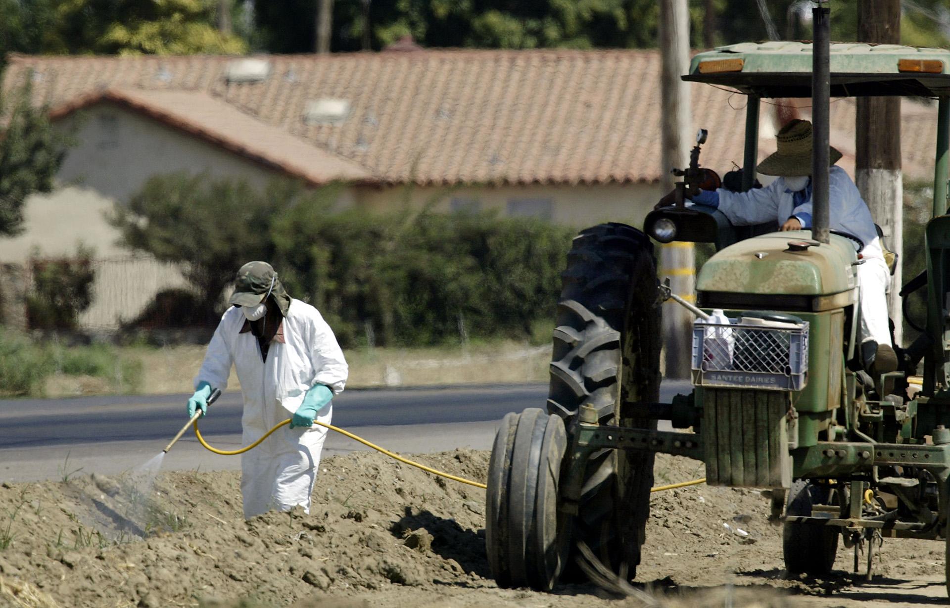 I pesticidi mettono a rischio anche gli organismi vitali per il suolo