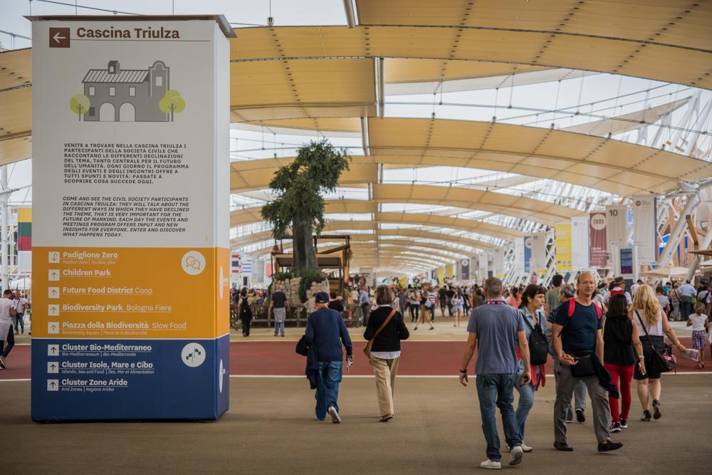 Expo 2015 la seconda vita dei padiglioni in legno lifegate for Tutti i padiglioni expo 2015
