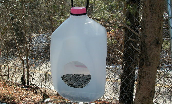 670px-Build-a-Milk-Jug-Bird-Feeder-Intro