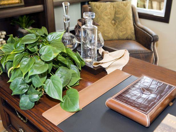 10 piante da ufficio per migliorare l 39 aria e l 39 umore - Piante da interno purifica aria ...