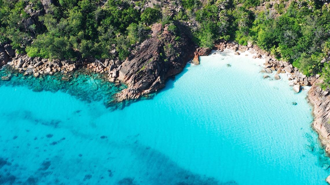Piante Curative : Seychelles le isole dalla natura selvaggia