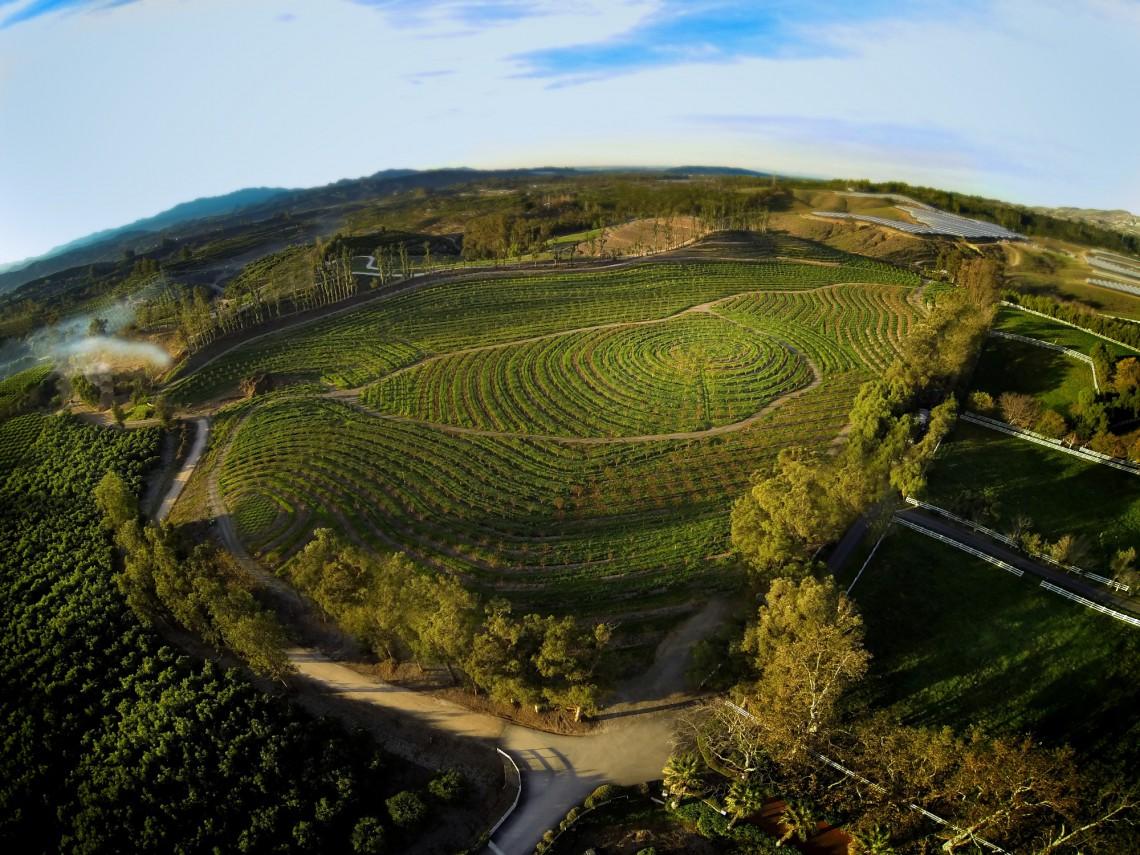 Una vista delle colture di Apricot Lane dall'alto. Estesa su 200 acri di terreno la fattoria ospita 850 animali e 75 varietà di coltivazioni biodinamiche