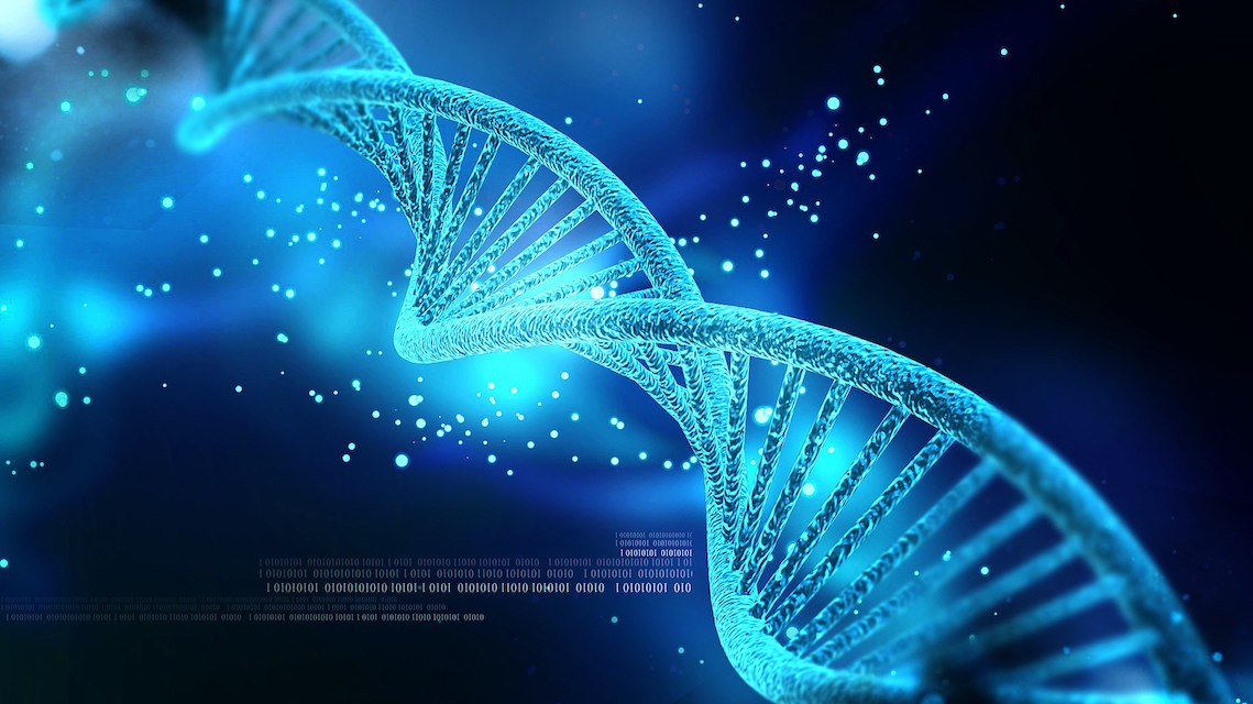 dna, DeProducers