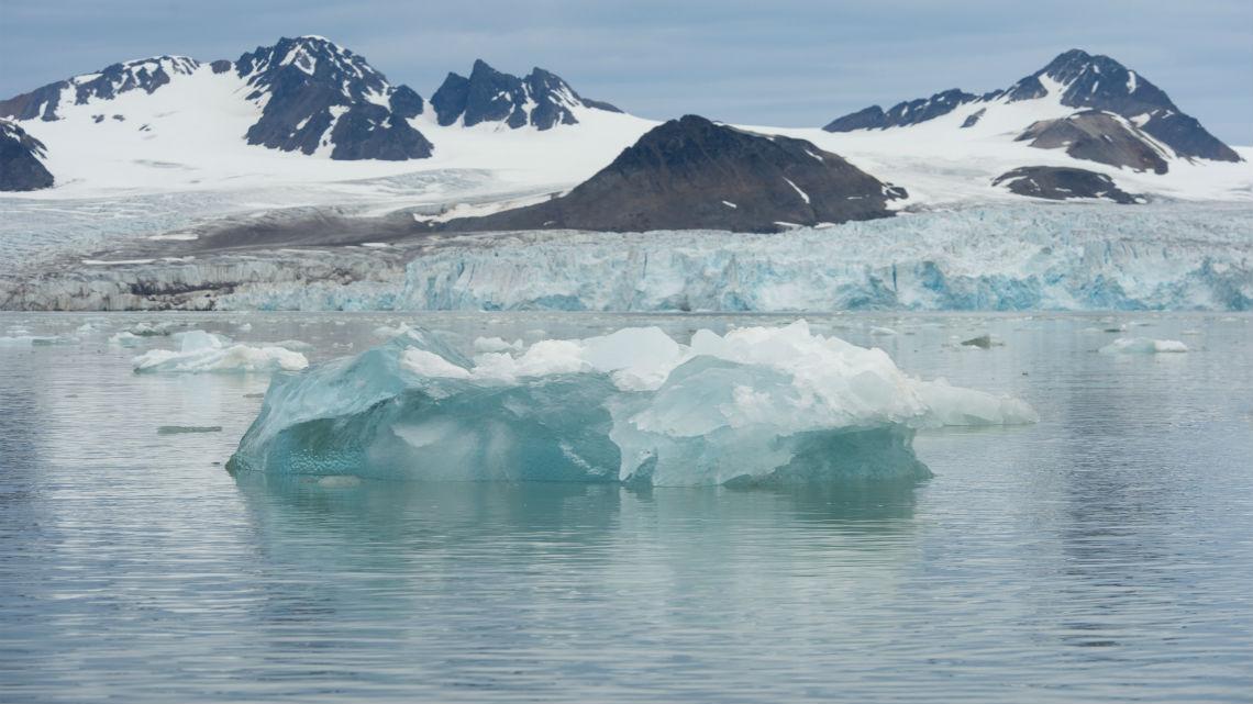 Artico selvaggio (2013).mkv [2/?] WEBRip X264 AAC iTA