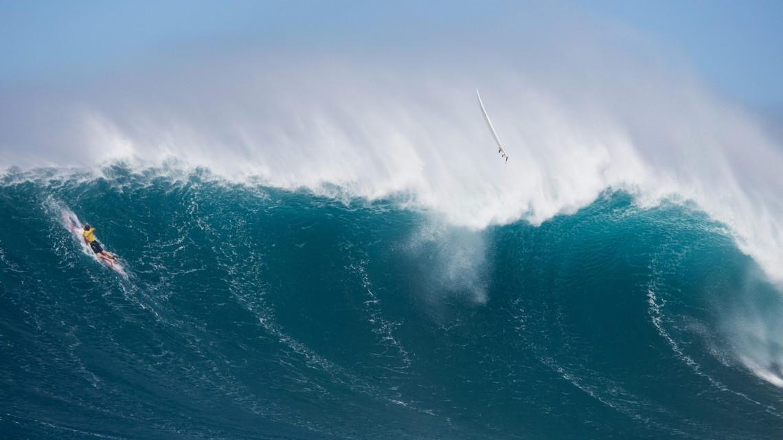 Rinnovabili l 39 europa investe 250 milioni di euro sull - Foto di animali dell oceano ...