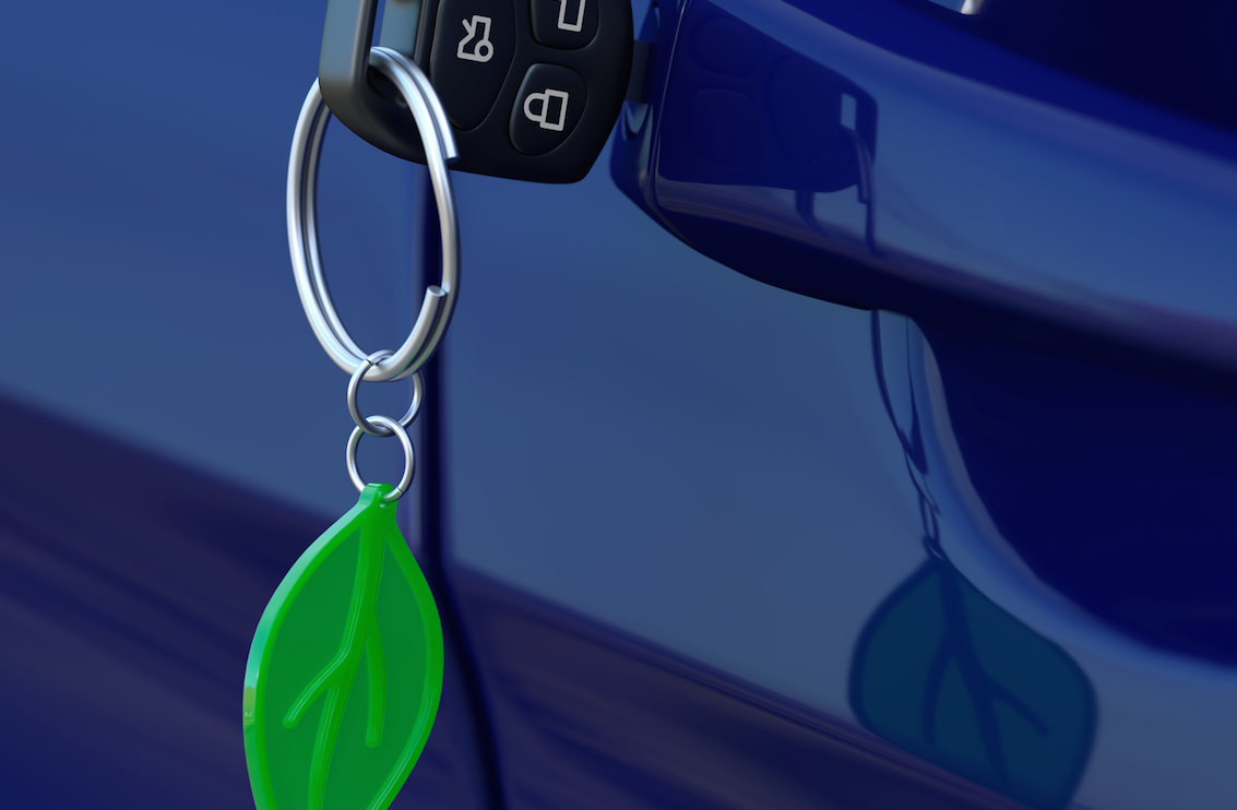 Car key with green leaf keychain