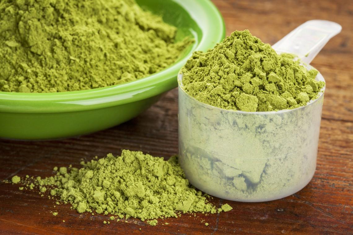 polvere moringa oleifera
