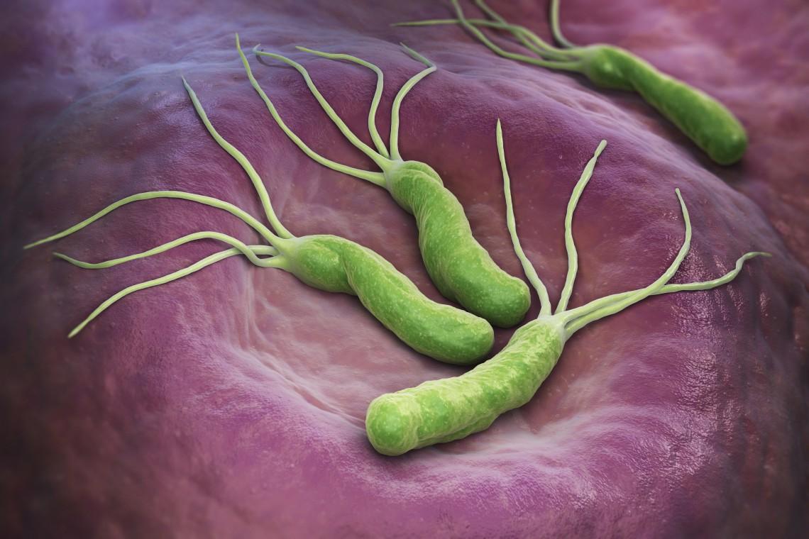 dieta helicobacter pylori durante il trattamento