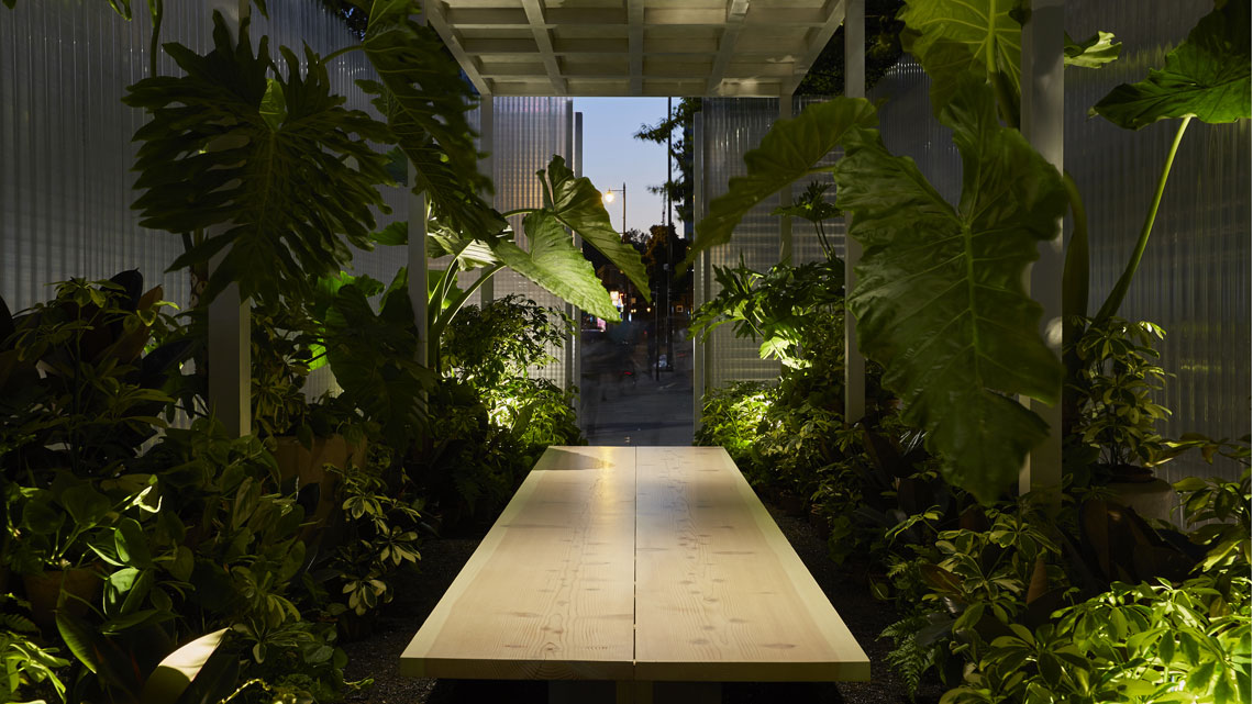 mini living 'forests' interno