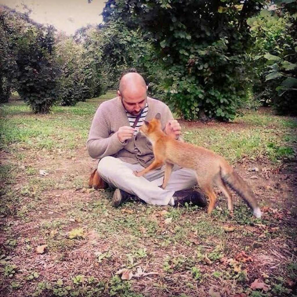 Fox man si fa annusare da una volpe