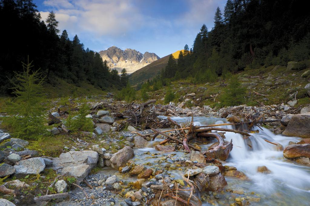 Parco nazionale svizzero natura intatta da 100 anni for Permesso di soggiorno svizzera