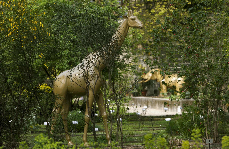 Fuorisalone 2015 l 39 orto botanico di brera si trasforma in for Giardino botanico milano