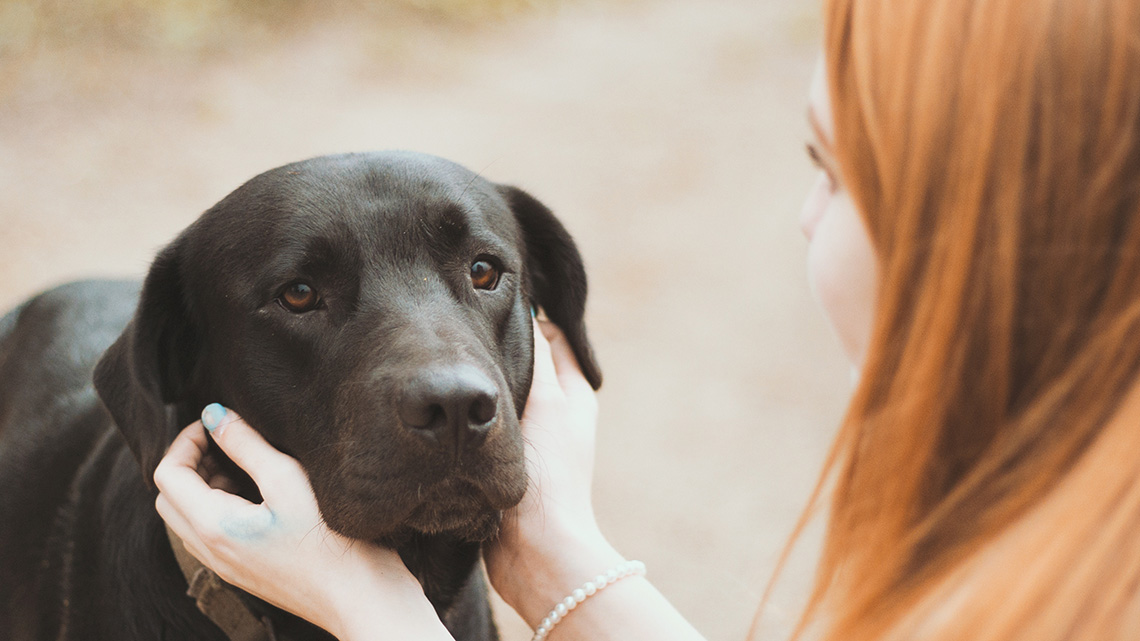 La Nostra Ansia E Il Nostro Stress Rovinano Il Rapporto Con Il Cane