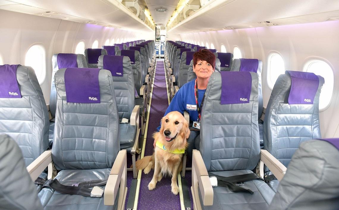 Cani in aereo basta stiva con delta viaggeranno in for Cabina principale delta