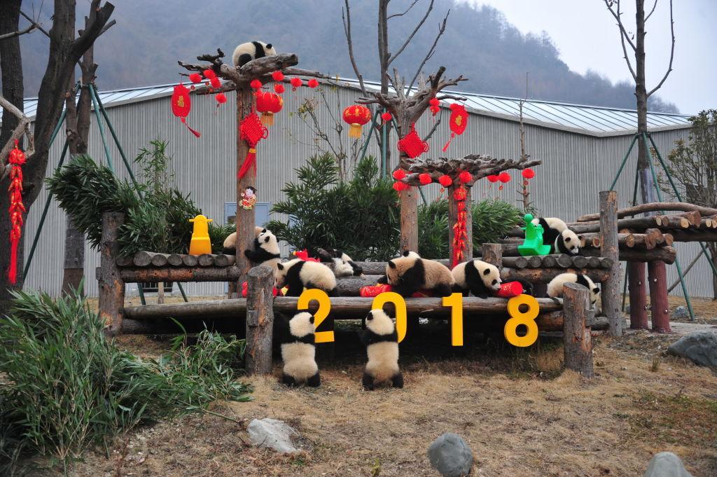 Decorazioni Con Lanterne Cinesi : Lanterne cinesi fai da te