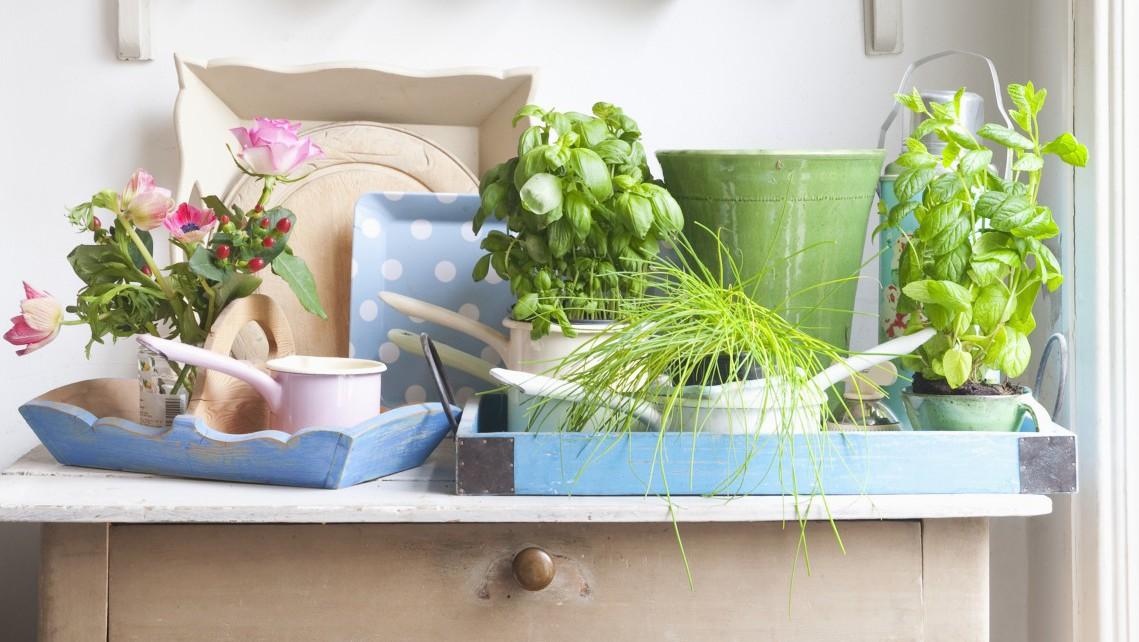 L 39 importanza dei colori negli ambienti interni lifegate - Colori casa interni ...