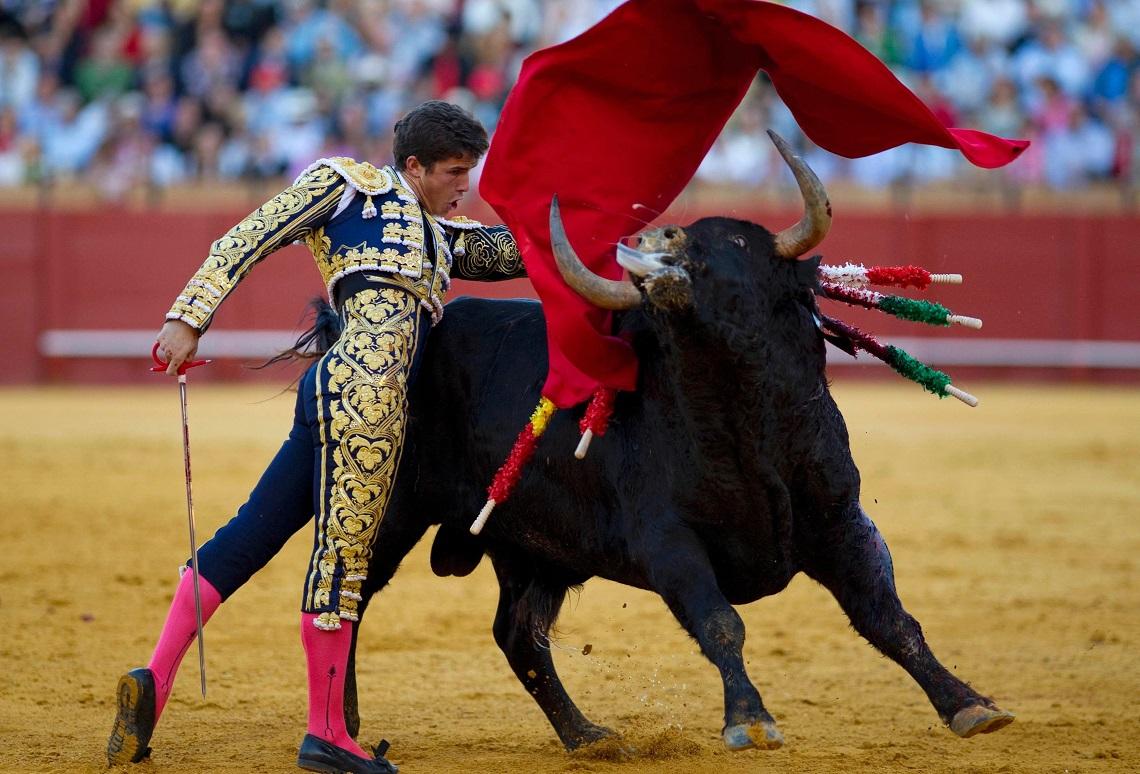 corrida What