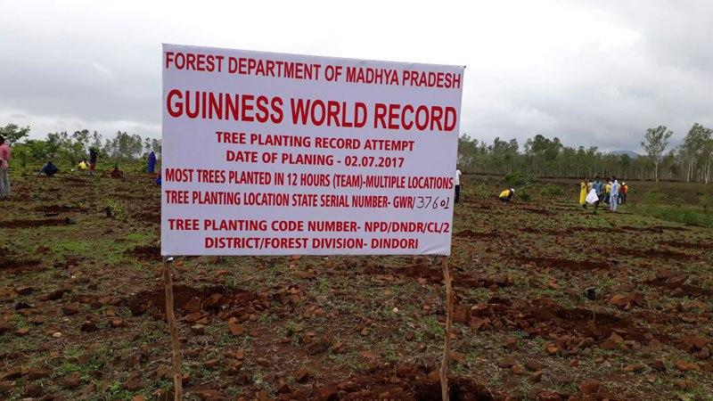 milioni di alberi