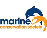 Il sito e la app per scegliere il pesce più sostenibile