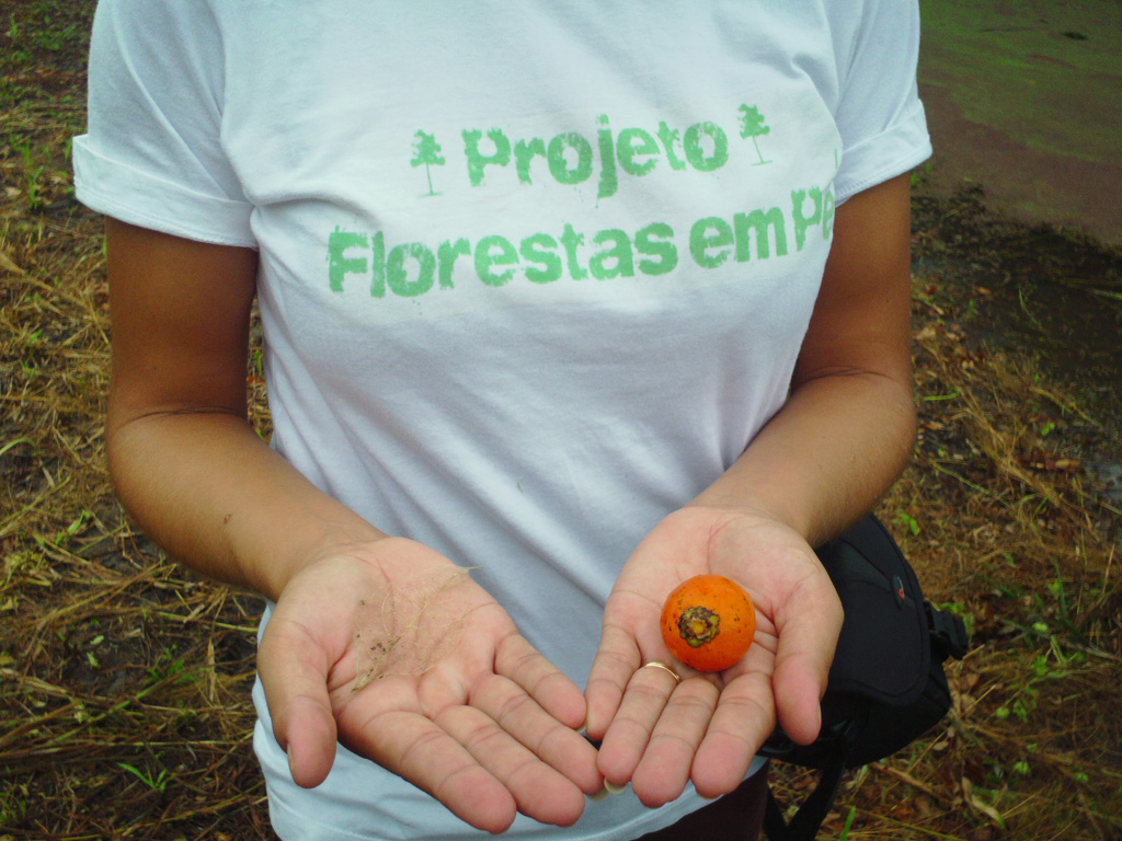 Foreste in Piedi, One like, one forest