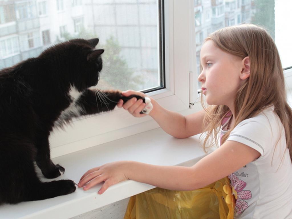 Gatti E Bambini 5 Pregiudizi Da Sfatare Lifegate