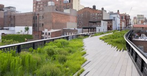 HighLine Project