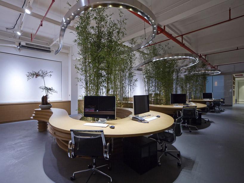 Piante Ufficio Ossigeno : Piante da ufficio per migliorare l aria e l umore lifegate