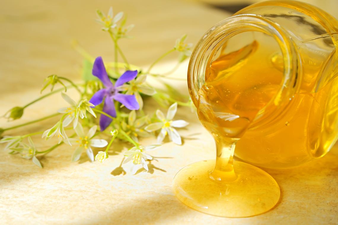 Franco berrino vi spiego perch il miele pi sano dello for Cabina dell orso dello zucchero