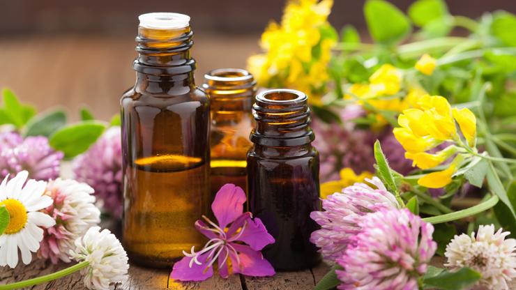 Sei in: persone / stile di vita / aromaterapia magnifici tre