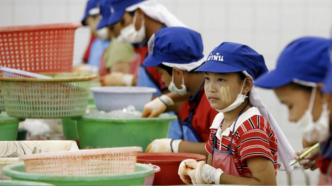 """I segnali di questo meccanismo della schiavitù nell'industria ittica thailandese erano arrivati da organizzazioni non governative e da un rapporto dell'Organizzazione Internazionale del Lavoro (ILO), già nel 2013, che parlava apertamente di """"gravi abusi"""" a bordo dei pescherecci Tailandesi e descrivendo """"casi di violenza e lavori forzati"""". Come se non bastasse, aveva ben evidenziato Altroconsumo nella sua attenta indagine, """"Secondo i dati del Labour Rights Promotion Network (LPN) gran parte dei lavoratori di questo settore sono minori: il 19% ha meno di 15 anni, mentre un altro 22% è tra i 15 e 17 anni. Lavorano su pescherecci o in capannoni sporchi e malsani, esposti a sostanze chimiche aggressive e senza cure mediche in caso di necessità. Vivono, anzi sopravvivono, alla mercé di caporali che li brutalizzano e che requisiscono i loro documenti."""