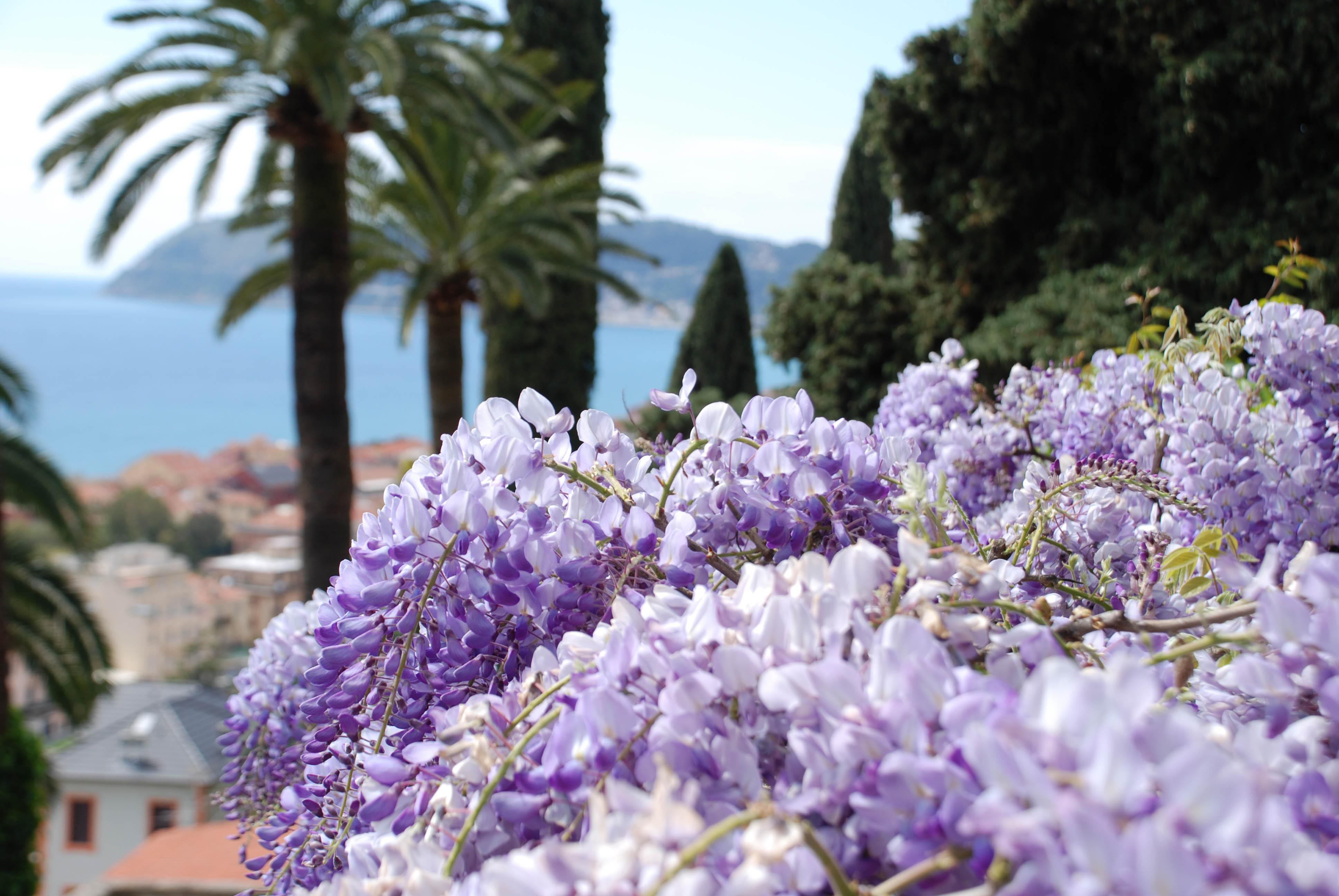 Parchi e giardini in fiore dove si trovano quelli pi - Giardini e fiori ...
