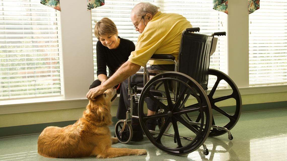 La pet therapy aiuta gli anziani a vivere meglio. @IngImage