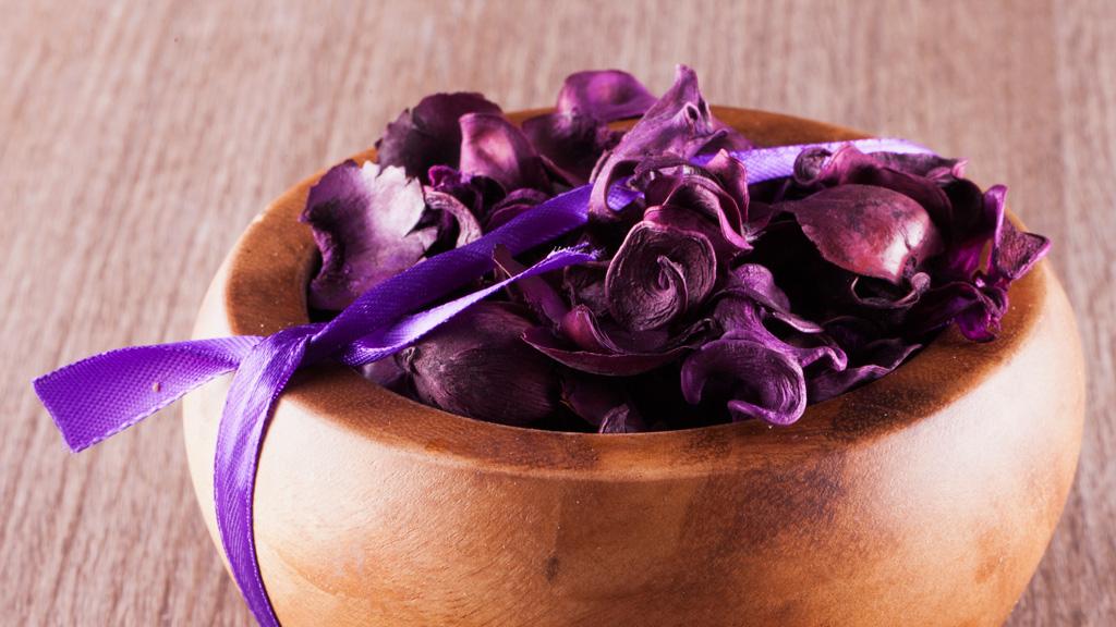 Pot pourri di fiori e piante