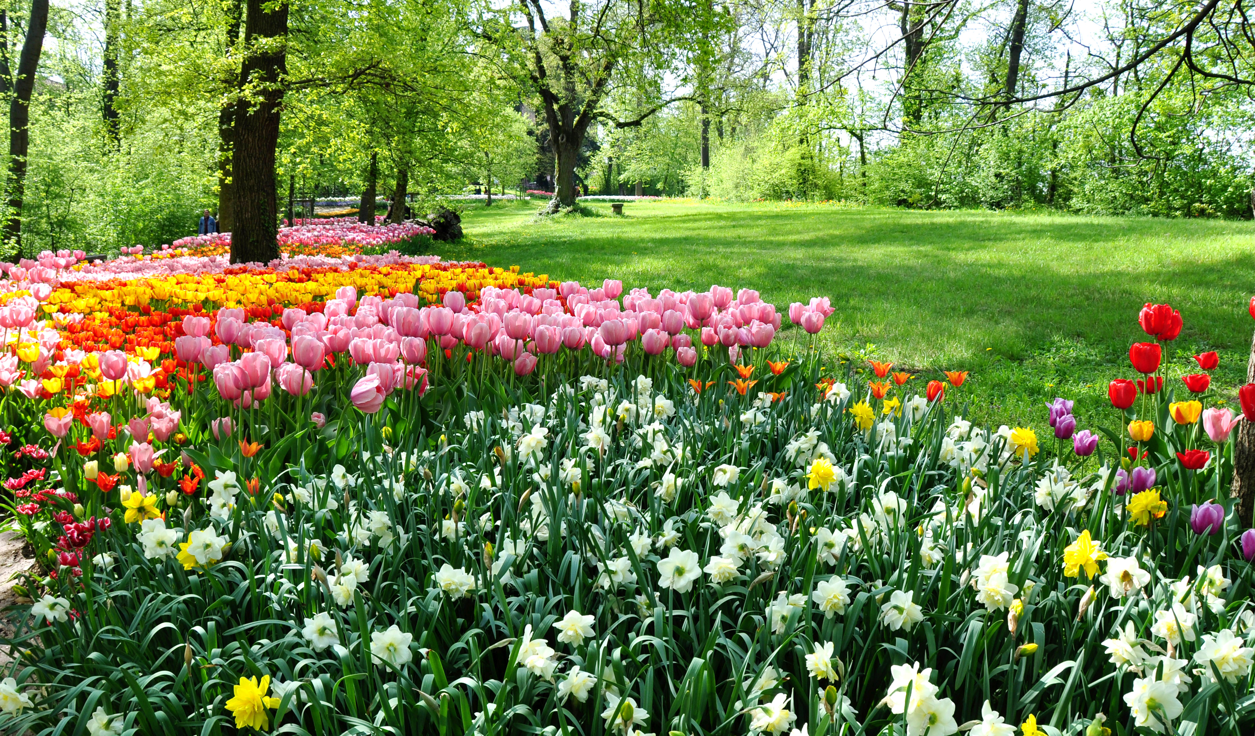 Parchi e giardini in fiore dove si trovano quelli più belli