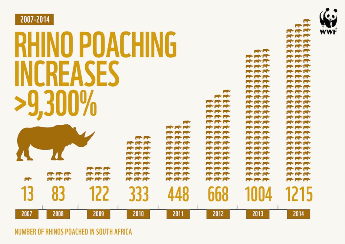 rhino-poaching-infographic 1140