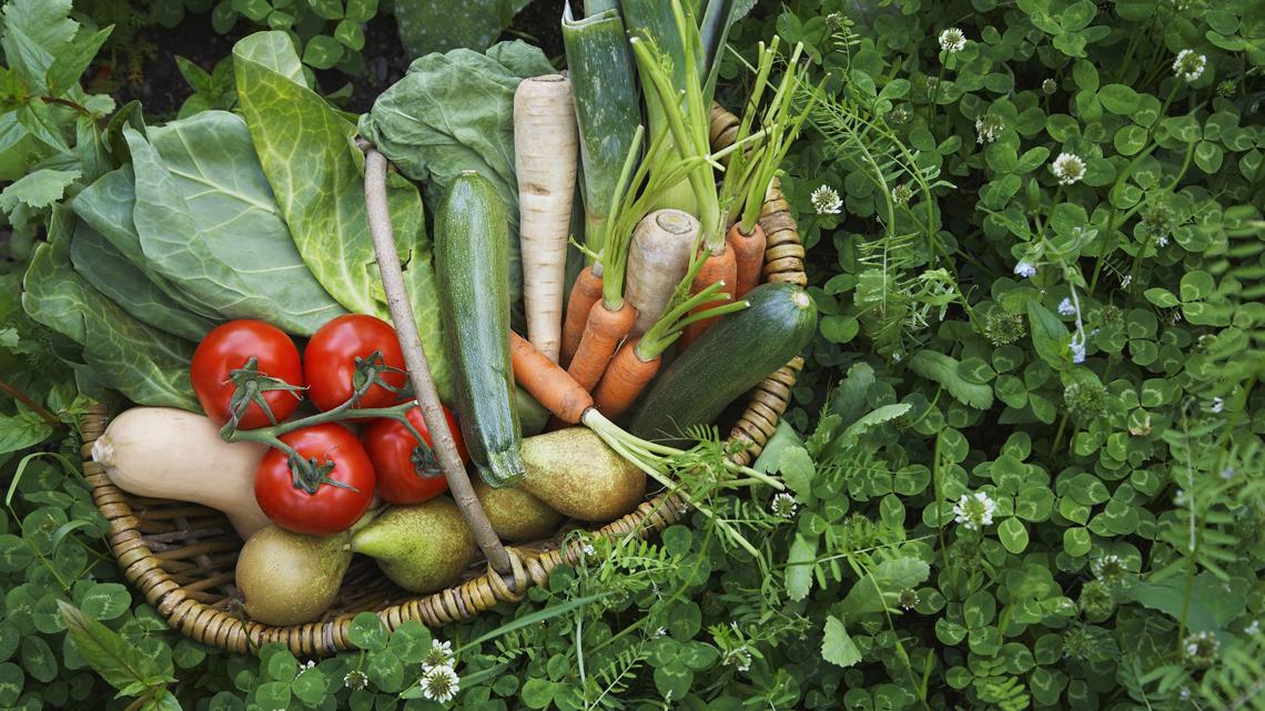 Ipertensione, la salute in un cesto di verdure - LifeGate