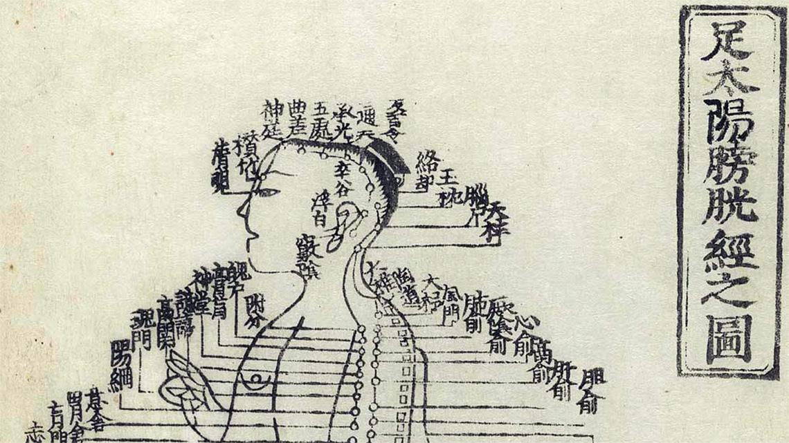 """Esistono dei percorsi energetici precisi nel corpo umano dove queste due energie si manifestano e sono denominati i """"meridiani energetici""""o """"canali energetici"""" nella medicina cinese."""