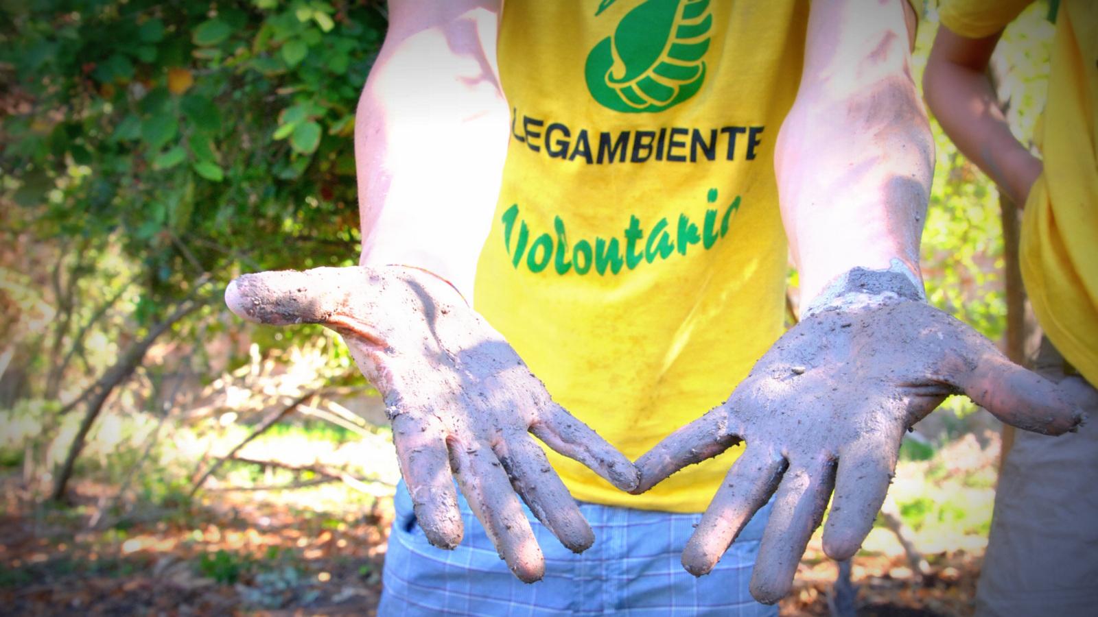 volontariato-legambiente_ev.jpg