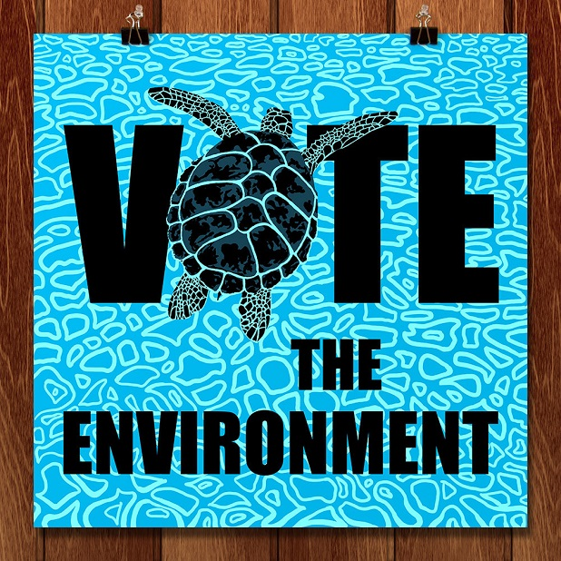 vote the environment, Candy Medusa
