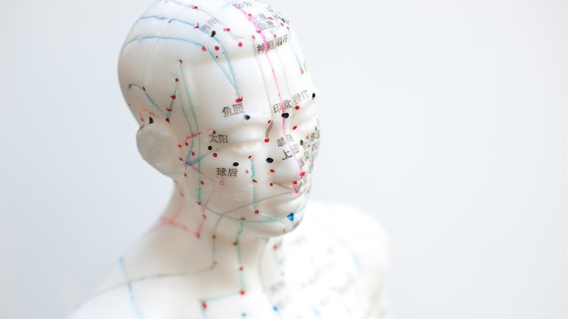 Nell'essere umano si possono individuare varie linee e forme di espressione di questa vitalità, che nel tempo vengono anche classificate e codificate. ©pexel